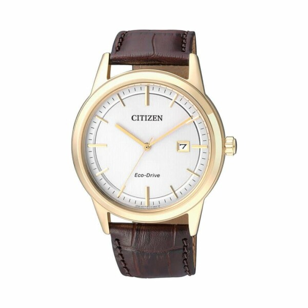 Montre Citizen Sports AW1233-01A