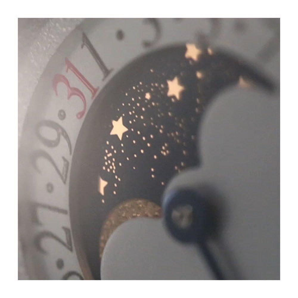 Montre Jaeger-LeCoultre Reverso Tribute Moon vue 4